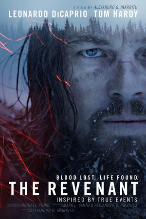 2016-06-01-1464777687-8602576-therevenant